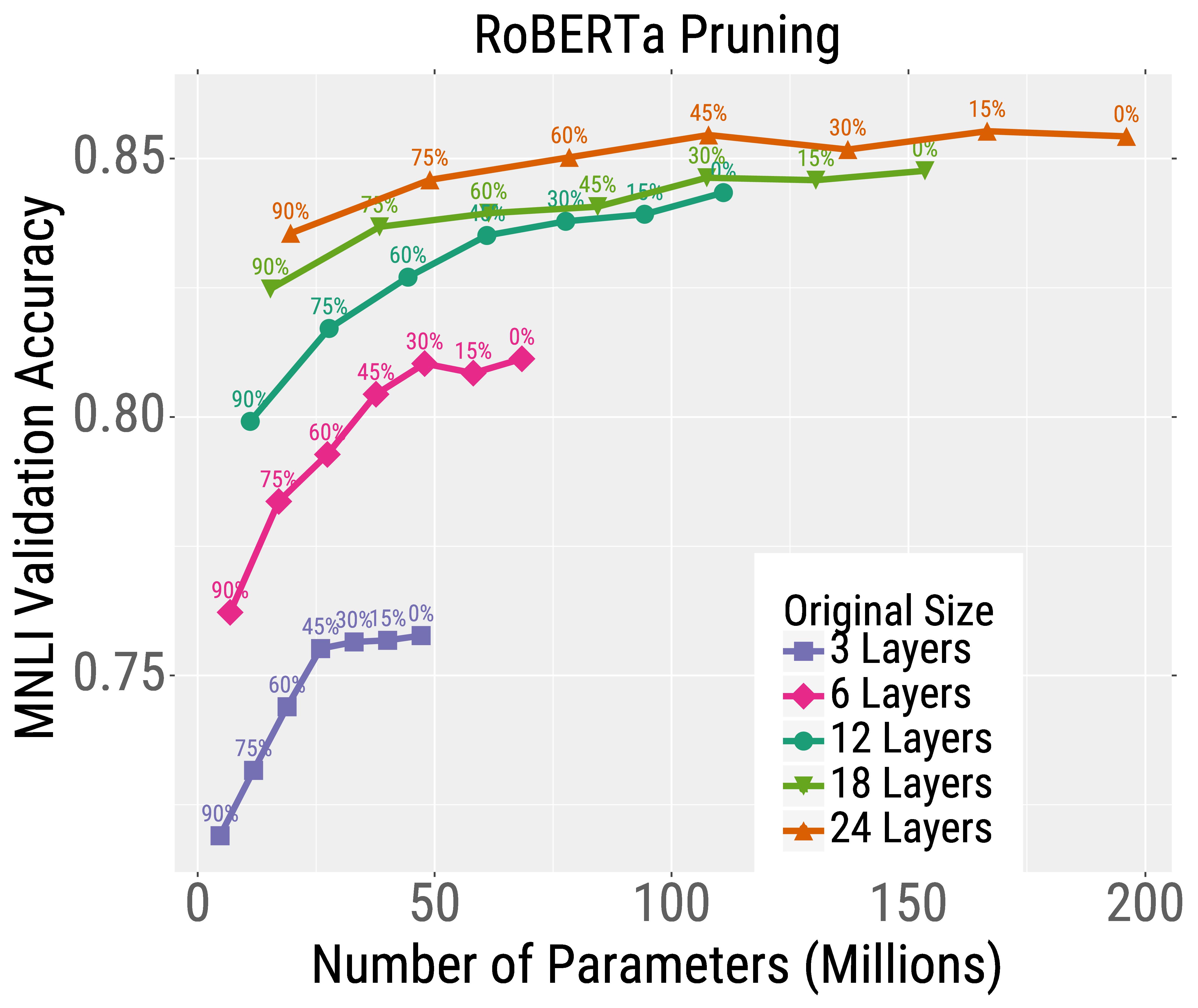 Roberta pruning and quantization