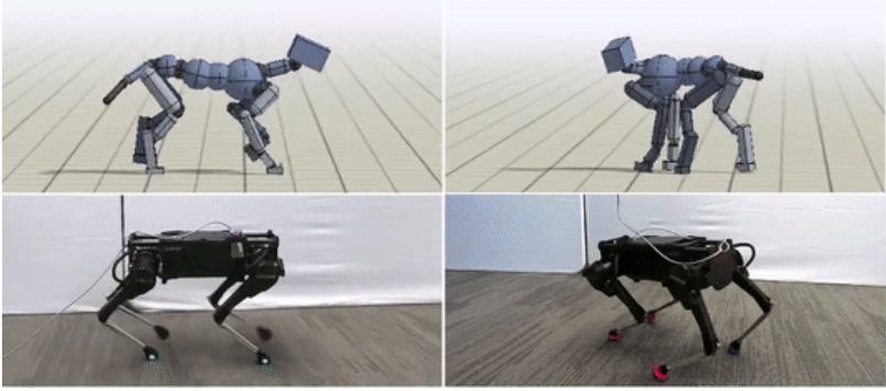 Robots learning to move like animals