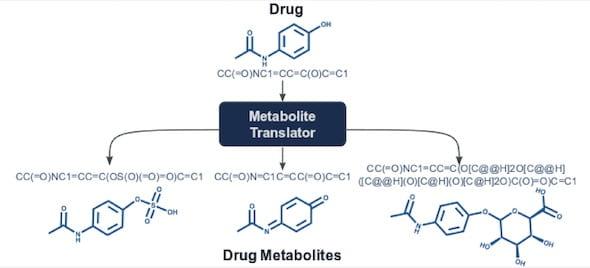 metabolite translator
