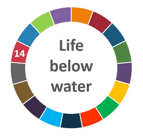 AIhub focus issue on life below water