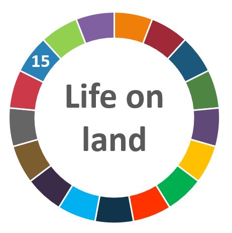 AIhub focus issue on life on land