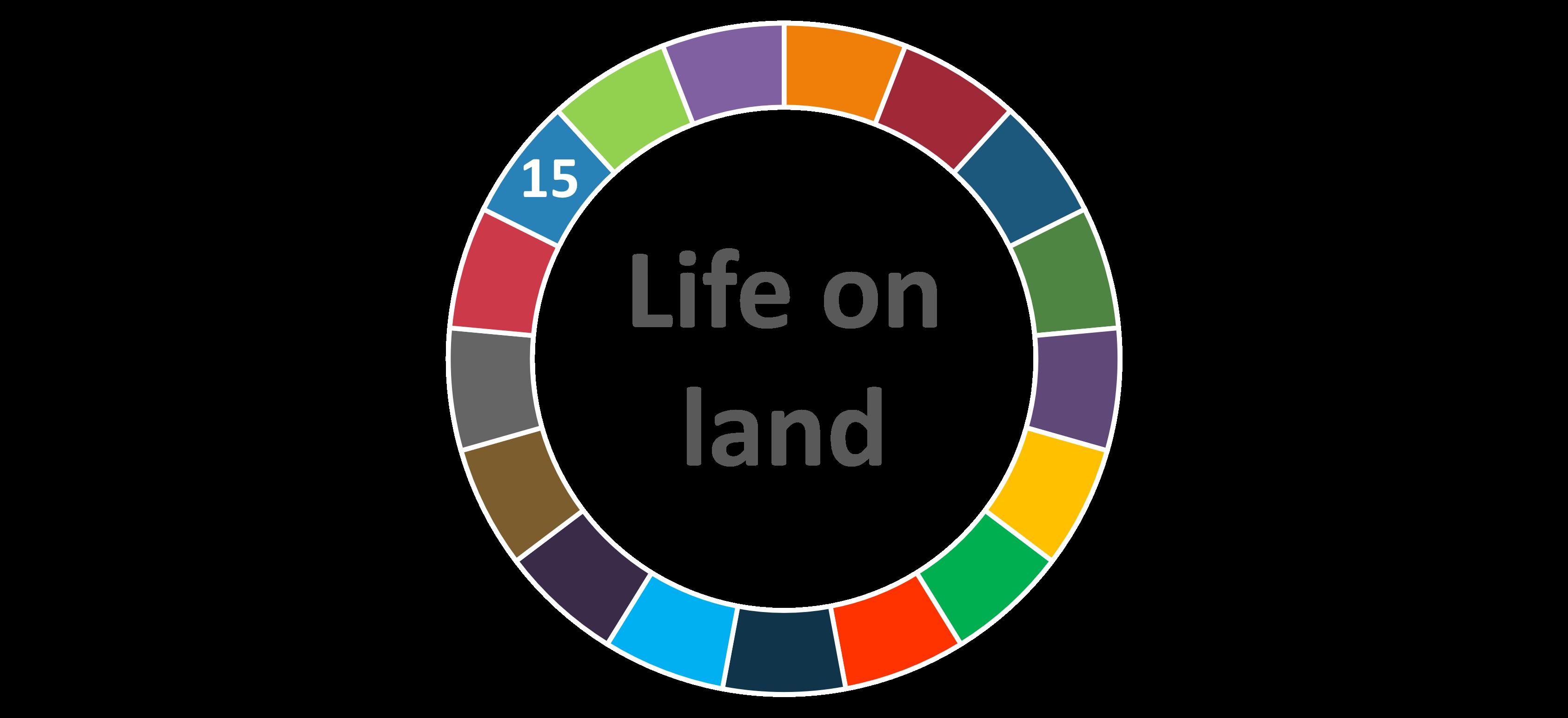 Life on land UNSDG AIhub logo
